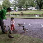 100521_duck_c