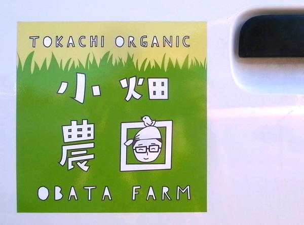 obata_600