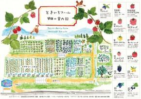 tokiiro_map_900